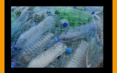 Life in Plastic – it's fantastic?!